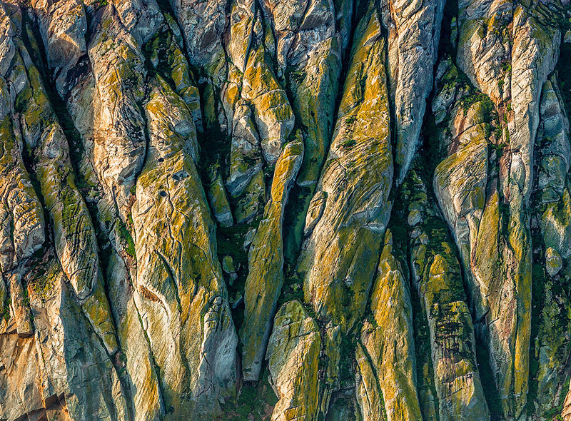 California Central Coast Abstract Detail.jpg