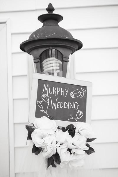 murphy (14 of 306).jpg