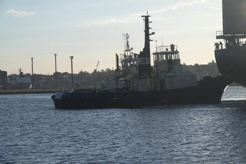 Katsuragi in Port Jackson 151.jpg