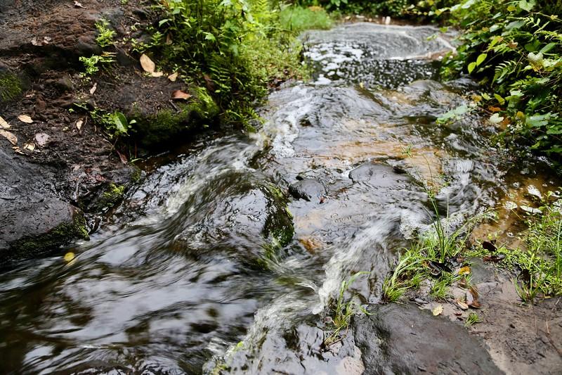 Creek A.jpeg