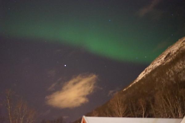 Arctic Feb 2015