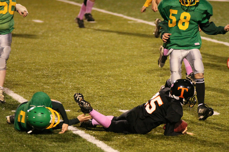10 10 23 Tow v Wyalusing A