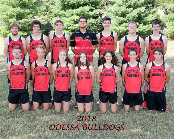 2018 OHS Cross Country