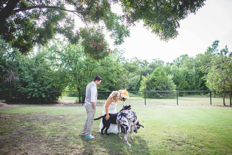 2014 09 14 Waddle Wedding - Bride and Groom-775.jpg