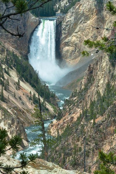 Lower Falls, Grand Canyon, Yellowstone