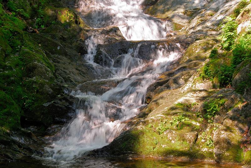 Bottom of Tannery Falls   (Jul 01, 2006, 10:55am)