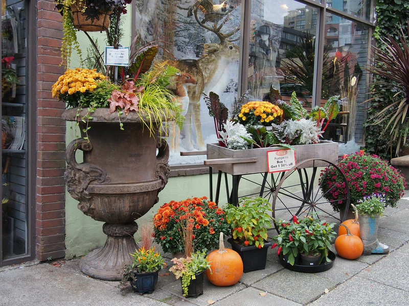"Oct. 19/13 - ""The Urban Garden"" store on Hornby Street, near 910 Beach Apartment Hotel"