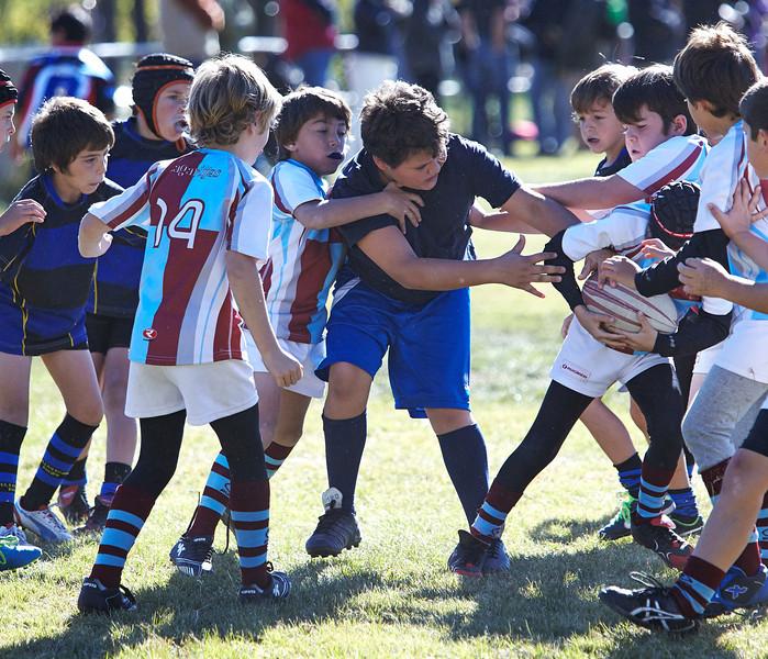 1206_09-Nov-13_RugbyOrcasitas.jpg