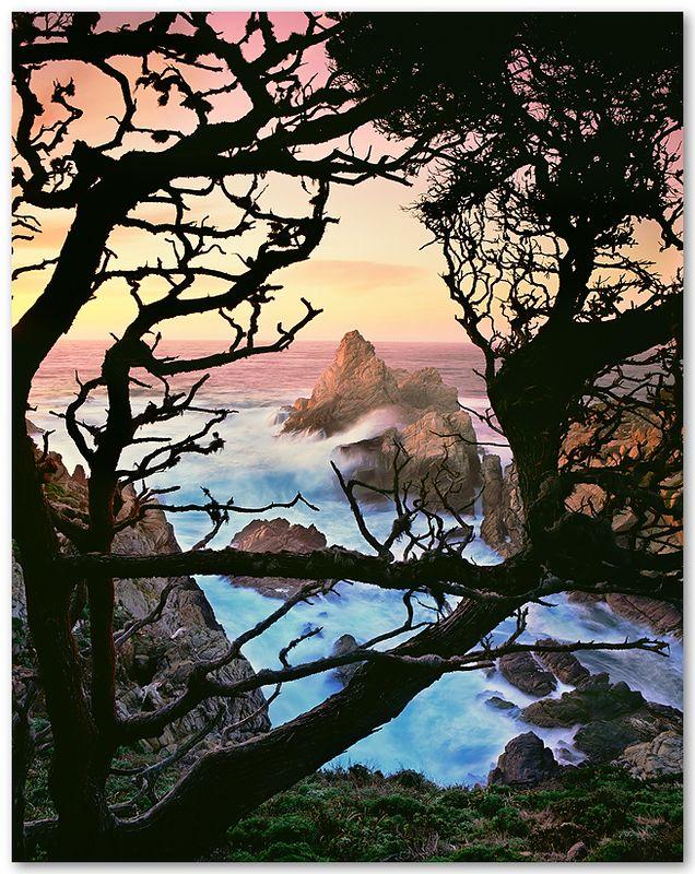 Pinnacle Cove