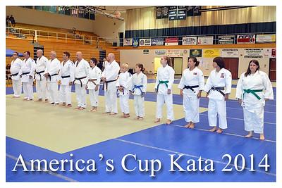 America's Cup Judo Tournament 2014