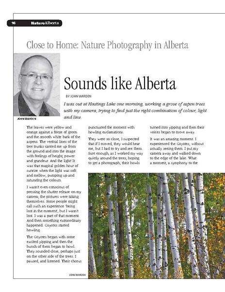 Sounds Like Alberta_1.jpg