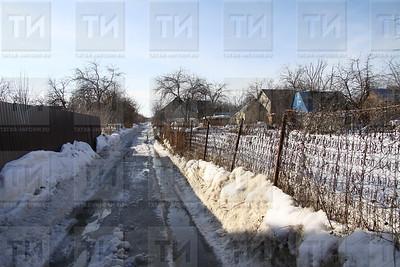 19.03.2019 Садоводческое общество (Александр Эшкинин)