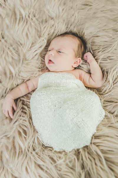 Lilly newborn