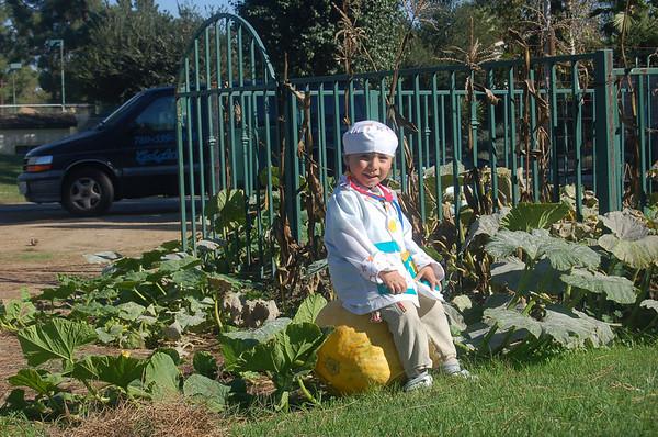 Summer, Halloween & Thanksgiving 2006