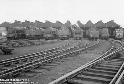 Royston shed 55D 1966 (near Cudworth)