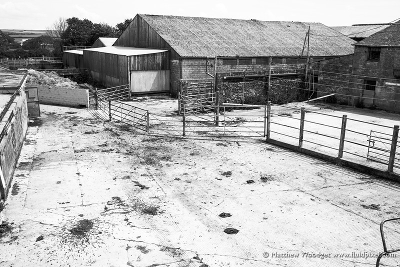 Woodget-140609-475--black and white, countryside, farm.jpg