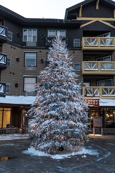 2019-12-06_SN_KS_December Snow-05327.jpg