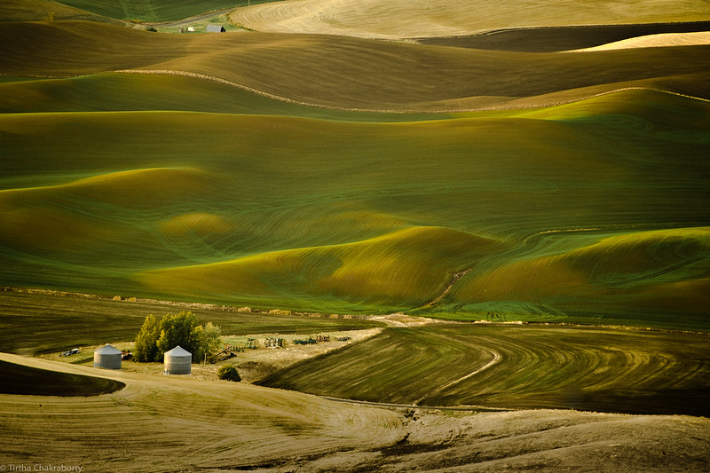 In the folds of Palouse.jpg