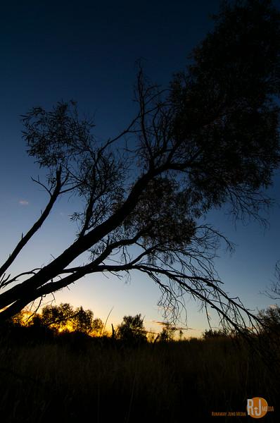Australia-queensland-Cunnamulla-4930.jpg