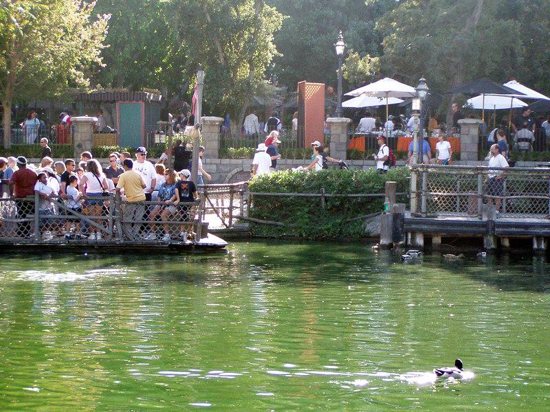 139.  Disneyland and California Adventure.JPG