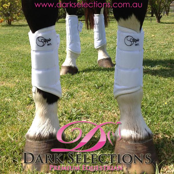 2012 10 20 Swan River Horse Trials Brookleigh CIC Dressage Arenas 2 3 4 11-40 till 2-40