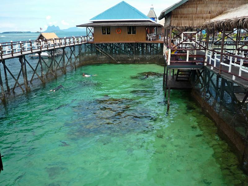 b aquarium.JPG