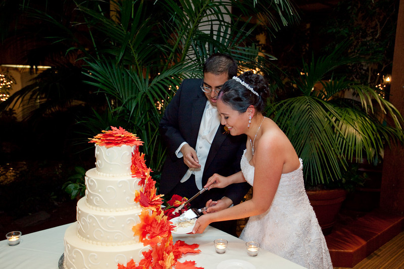 Emmalynne_Kaushik_Wedding-1207.jpg