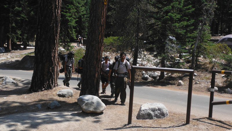 sequoia 145.JPG