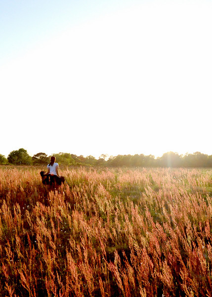 redgrass_9269.jpg