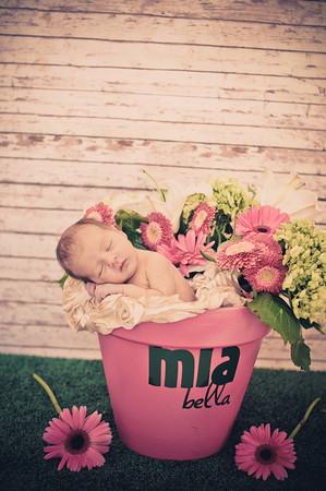 Mia Newborn