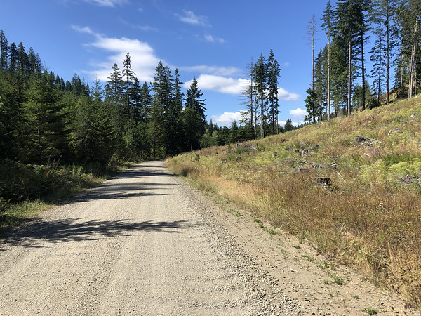 Forest Service Road 24