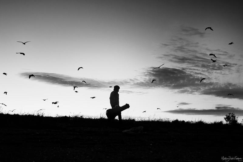 The Loner- On my way