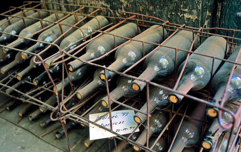 Vino Malbec reposando en botella