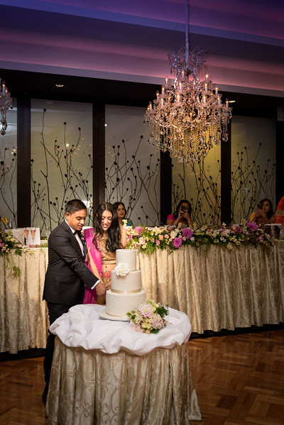 Sameer and Sanjana Reception - Le Montage
