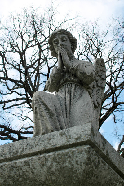 """Angel Joey"" - Daily Photo - 05/19/13  I was taking pictures in a local cemetery, Mt. Olivet, Aurora, Illinois.  This statue reminded me of my friend's son when he was young especially the eyes.  Now in his twenties, Joey is a convicted felon and heroin addict trying to make his way back from the brink.  Such a sad waste of youth, he is a talented intelligent soul and my prayers are with him that he can find his way."