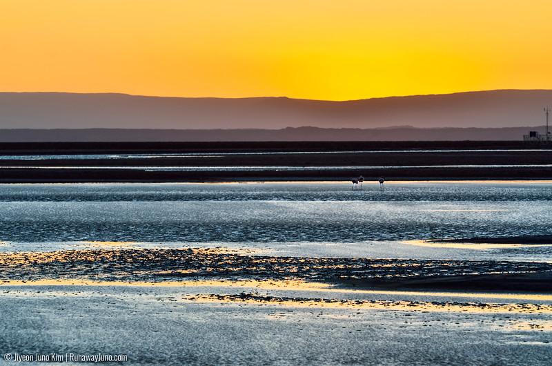 10.12_Atacama-9687.jpg
