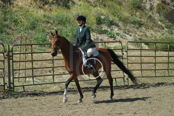 Class 43: All Breed Hunt Seat Eq. 18 & Over