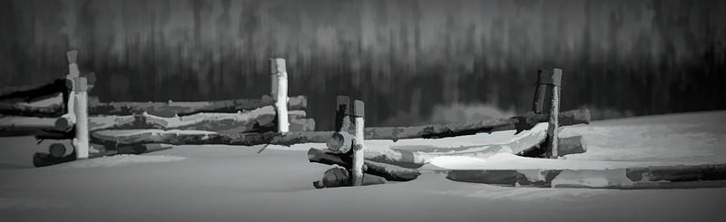 crop b & w fence tell large file cartoon natural -studio.jpg