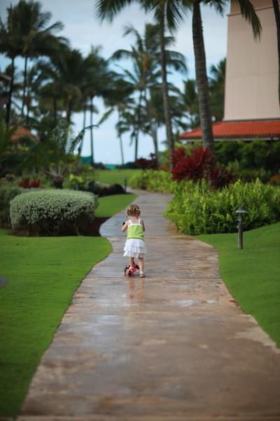Kauai_D4_AM 006.jpg