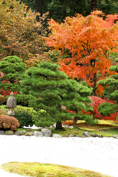 Portland Japanese Garden  11-11-11  3533.jpg
