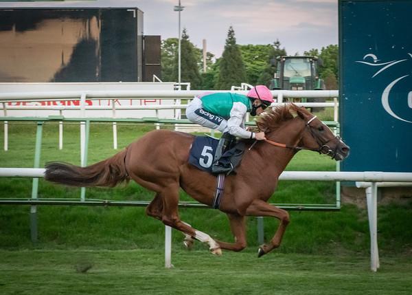 Race 7 - Boltaway