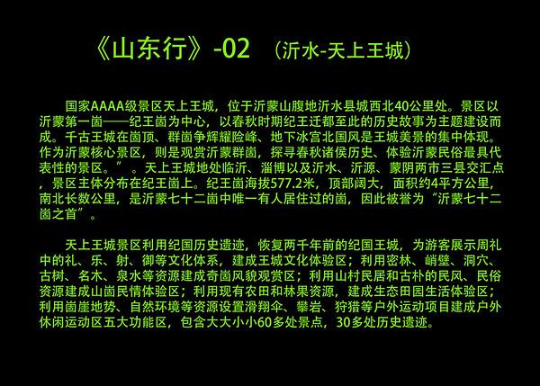 2016沂水上书王城
