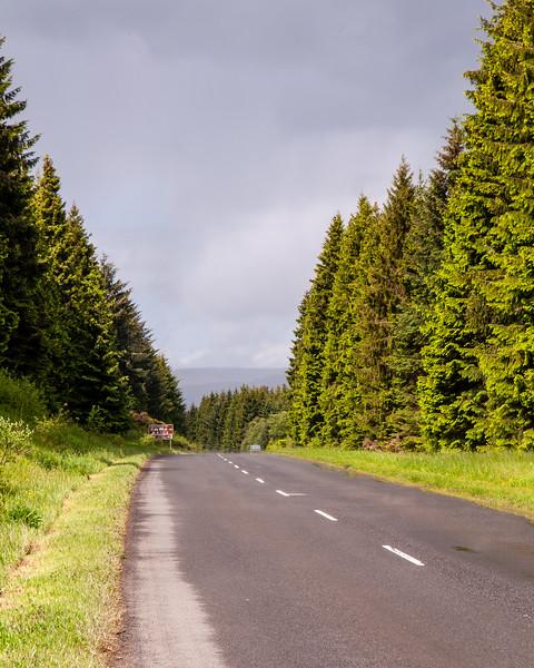 Kielder Forest road