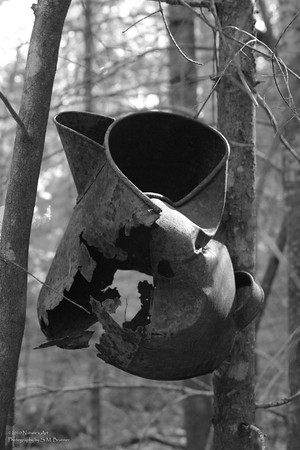 Of Days Gone By ... abandoned coffee pot along Mayberry Cove Trail on West Grand Lake, Maine