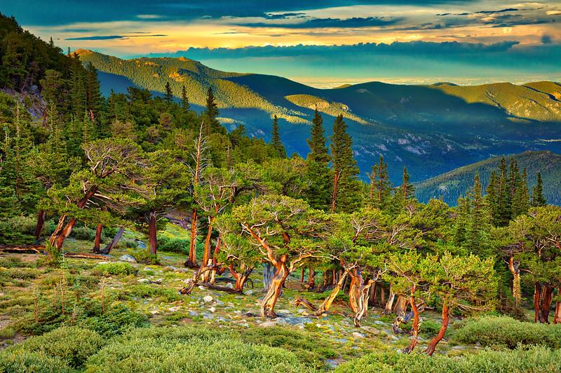 417 Mt. Evans
