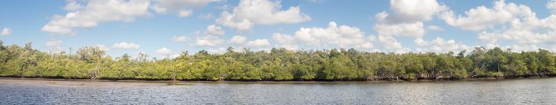 Everglades-166-Pano i7.jpg