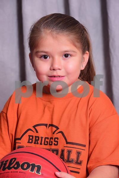 Briggs Basketball 2017