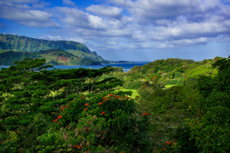 Beautiful nature of Kauai island, Hawaii