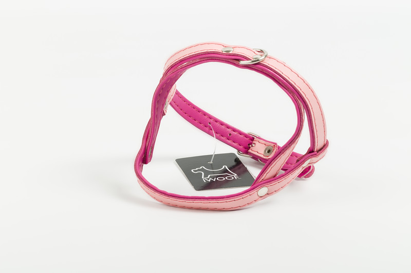 iwoof_designer_dog_accesories_collars_leads_toys_beds_luxury_posh_leather_fabric_tags_charms_treats_puppy_puppies_trends_fashion_bowls-0023.jpg