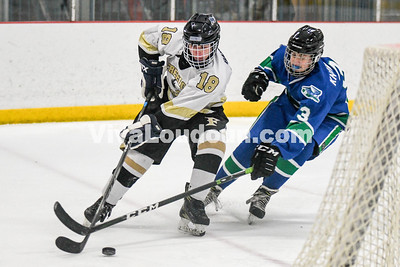 Ice Hockey: South Lakes vs Freedom 1.4.2019 (by Mike Walgren)